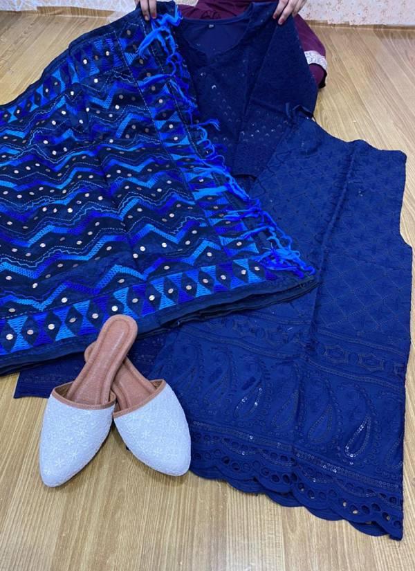 Vikash Eshan Mastani Chikan Sequence Work Punjabi Style Designer Salwar Suits Collection